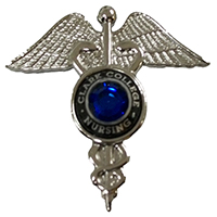 Silver Caduceus Pin Clark College Nursing